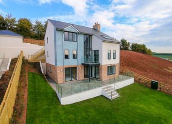 Thumbnail 4 bedroom detached house for sale in Palm Rise, Kingskerswell, Newton Abbot