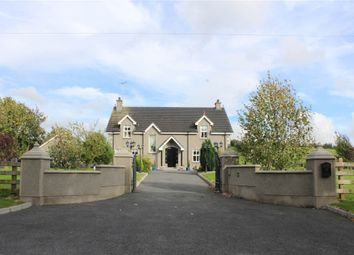 Thumbnail 4 bed detached house for sale in Lurgancahone Road, Newry