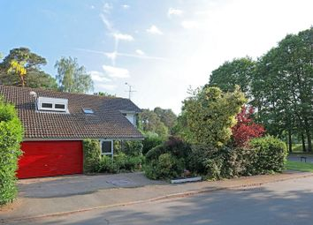 Thumbnail 5 bed detached house for sale in Southwold, Bracknell