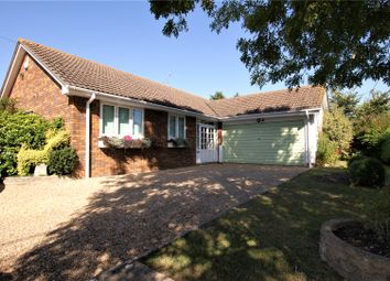 Thumbnail 4 bed bungalow to rent in Dorchester Road, Lytchett Minster, Poole, Dorset