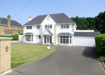 Thumbnail 5 bed detached house to rent in Silverdale Avenue, Walton-On-Thames
