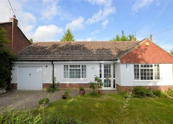 Thumbnail 2 bed detached bungalow for sale in The Avenue, Mortimer Common, Reading