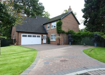 Thumbnail 4 bed detached house for sale in Cherry Lane, Carlisle
