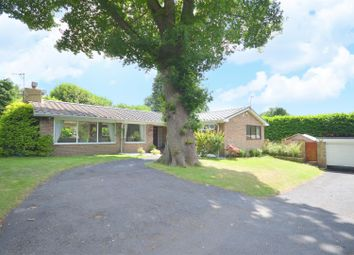 Thumbnail 4 bed detached bungalow for sale in Warren Lodge, Kingswood, Tadworth