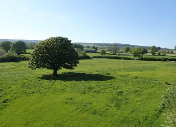 Thumbnail Farm for sale in Yarpole, Leominster