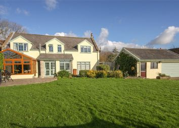 Thumbnail 4 bed detached house for sale in Baptist Cottage, Stone Allerton, Somerset