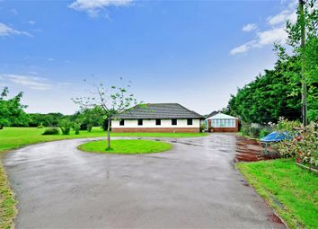 Thumbnail 6 bed detached bungalow for sale in Pean Hill, Whitstable, Kent