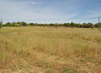 Thumbnail Land for sale in Biniali, Sencelles, Spain