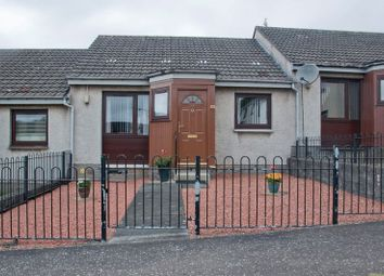 Thumbnail 1 bed bungalow for sale in Tay Court, Alloa
