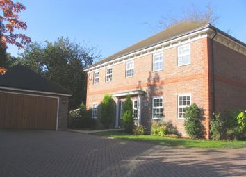 Thumbnail 5 bed detached house to rent in Old Portsmouth Road, Camberley
