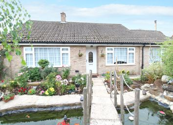 Thumbnail 3 bed detached bungalow for sale in Beccles Road, Thurlton, Norwich