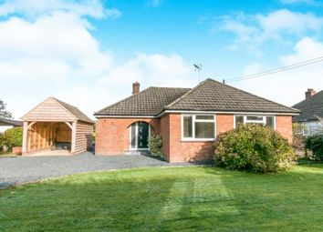 Thumbnail 3 bed bungalow for sale in Medstead, Alton, Hampshire
