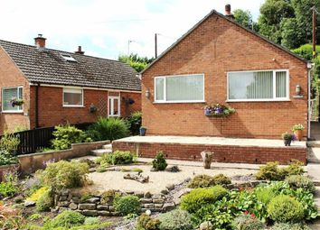 Thumbnail 2 bed detached bungalow for sale in Henffordd, Mold, Flintshire