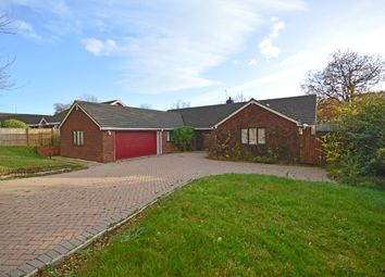Thumbnail 4 bedroom bungalow for sale in Lower Lane, Ebford, Exeter
