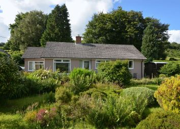 Thumbnail 2 bedroom bungalow for sale in Radnor, Lifton