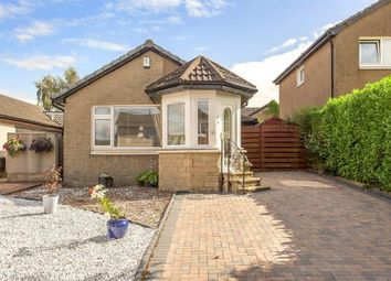 Thumbnail 2 bed detached bungalow for sale in Buchan Drive, Dunblane