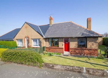 Thumbnail 1 bed semi-detached bungalow to rent in Oliver Road, Wooler