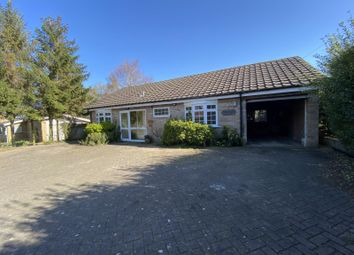 Thumbnail 3 bed bungalow to rent in The Firs Woodditton Road, Newmarket