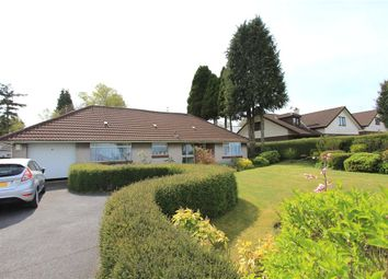 Thumbnail 3 bed detached bungalow for sale in Failand, Bristol