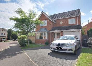 Thumbnail 4 bed detached house to rent in Peto Avenue, Colchester