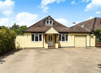 Thumbnail 4 bed bungalow for sale in Queens Road, Bisley, Woking, Surrey