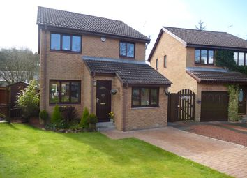 Thumbnail 4 bedroom detached house for sale in Inchmurrin Drive, Rutherglen, Glasgow