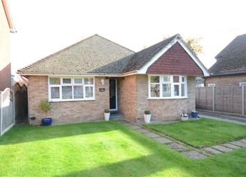 Thumbnail 3 bed detached bungalow for sale in Albion Road, Sandhurst, Berkshire