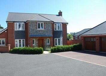 Thumbnail 4 bed detached house for sale in Stowbrook, Sidmouth
