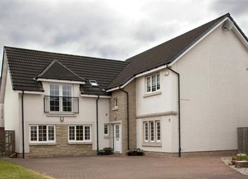 Thumbnail 5 bed detached house for sale in Drover Round, Larbert