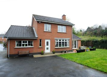 Thumbnail 4 bed detached house for sale in Berkley Court, Belfast
