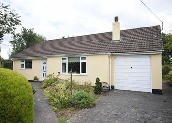 Thumbnail 3 bed detached bungalow for sale in Rye Park, Beaford, Winkleigh