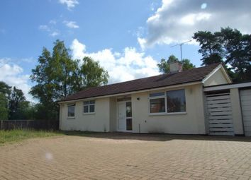 Thumbnail 3 bed detached bungalow to rent in Kingston Road, Camberley, Surrey