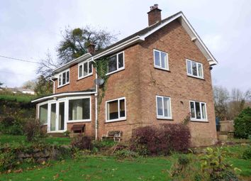 Thumbnail 4 bed detached house to rent in Chapel Hill, Aylburton, Lydney