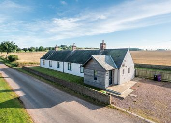 Thumbnail 4 bed detached house for sale in Bolshan, Arbroath, Angus