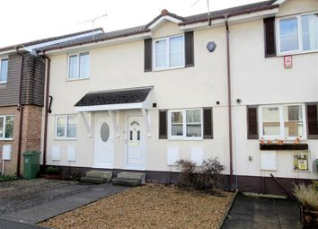Thumbnail 2 bed terraced house for sale in White Friars Lane, St Judes, Plymouth