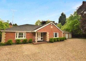 Thumbnail 7 bed bungalow to rent in Elms Road, Stoneygate, Leicester