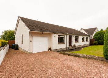 Thumbnail 4 bed detached bungalow for sale in Buchan Drive, Perth