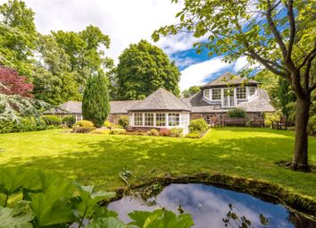 Thumbnail 5 bed detached house for sale in Polwarth Terrace, Edinburgh