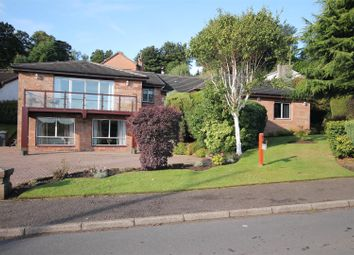 Thumbnail 6 bed detached house for sale in Laighlands Road, Bothwell, Glasgow