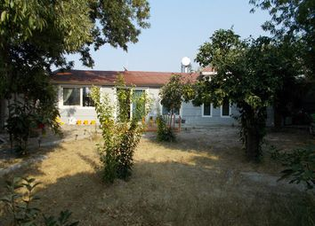 Thumbnail 4 bed bungalow for sale in Lapta, Cyprus