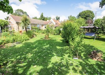 Thumbnail 3 bed detached bungalow for sale in School Lane, Cantley, Norwich