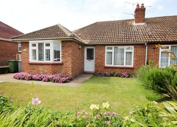 Thumbnail 3 bed bungalow to rent in Lone Barn Road, Sprowston, Norwich