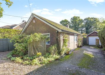 Thumbnail 3 bedroom bungalow for sale in Northchapel, Petworth, West Sussex