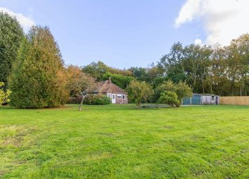 Thumbnail 3 bed detached bungalow for sale in Stone Street, Stelling Minnis, Canterbury