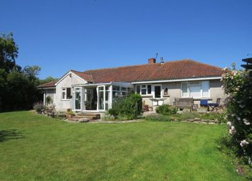 Thumbnail 4 bed detached bungalow for sale in Newtown, West Pennard, Glastonbury