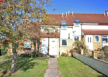 Thumbnail 2 bed terraced house for sale in Howards Way, Newton Abbot