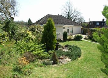 Thumbnail 4 bed detached bungalow for sale in East Street, Addington, West Malling