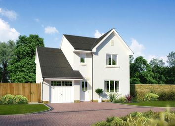 "Thumbnail 4 bedroom detached house for sale in ""Roslin"" at Newlands Drive, Portlethen, Aberdeen"