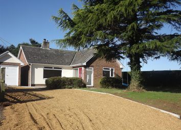 Thumbnail 4 bedroom bungalow for sale in Back Lane, Upton, Norwich