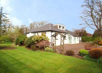 Thumbnail 4 bed bungalow for sale in Stanley Drive, Brookfield, Johnstone, Renfrewshire